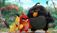 Blu-ray / DVD: Angry Birds La Película