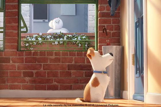 Película: La vida secreta de tus mascotas